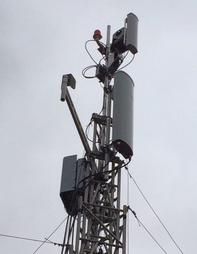 LinkAlign-360RPT-10 with Cellular Antenna